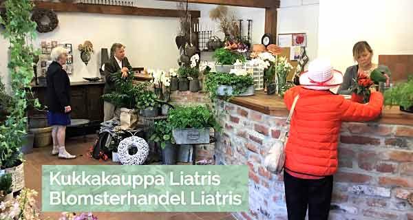 Flower Shop Liatris - Pargas